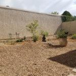 pollinator courtyard